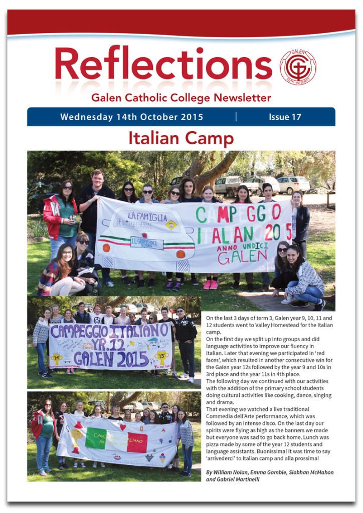 Newsletter17Cover